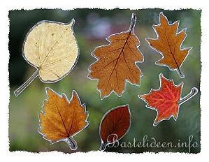 Herbstbasteleien fensterbild mit gepresste blaetter for Basteln mit blattern