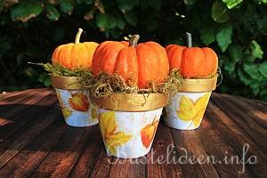 Bastelideen Basteln Herbst Und Halloween
