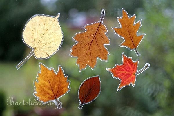 Herbstbasteleien fensterbild mit gepresste blaetter for Herbstbasteleien mit kindern basteln