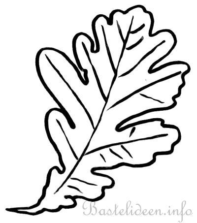 Bastelvorlage, Ausmalbild oder Malvorlage - Eichenblatt