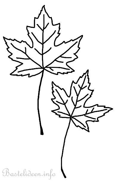 Basteln im Herbst - Ahorn Blätter Malvorlage oder Bastelvorlage